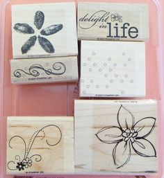 Stampin Up delight in life