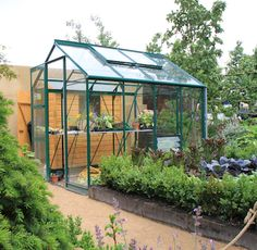Rhino Premium 6x8 Dream greenhouse!