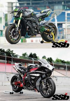You Choose: FZ1 or R1?