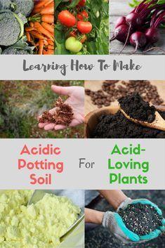 Pin On Best Soil For Gardening