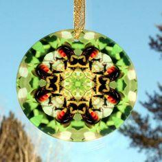 Honey Bee Glass Suncatcher Sacred Geometry by melbecreations