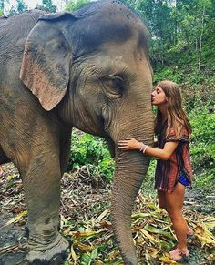 WEBSTA @ hippietribex - My absolute favorite animal in the world 🐘🌏✨ Tag someone who loves elephants !! @vegantribex 💚 p.s elephants need our love and protection so make sure you never ride them or go to circuses that exploit them ✨