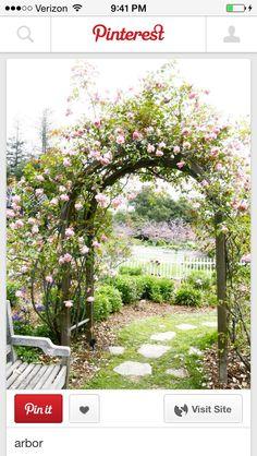 Cherry Blossom Arbor