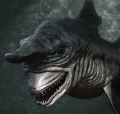 Have You Ever Seen Such a Scary Goblin Shark with Two Faces? - Goblin shark is one of the strangest and rarest species of sharks that can be ever seen. It is a deep-sea shark that is not widely known and it is als. Types Of Sharks, Species Of Sharks, Deep Sea Creatures, Weird Creatures, Underwater Creatures, Underwater Life, Deep Sea Sharks, Goblin Shark, Deep Sea Fishing