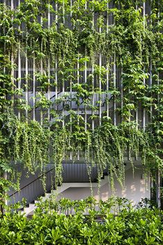 Una creación mítica cobra vida en un resort de Vietnam. #fachadasverdesverticalgardens