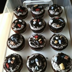 Dirt and rock cupcakes