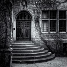 The Entry By: Ray Laurence