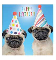 Pug birthday cards at www.ilovepugs.co.uk  post worldwide