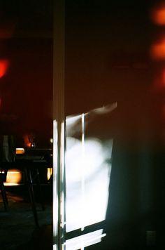 autumn light leaks by beth @local milk