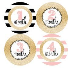 Monthly Baby Stickers Milestone Month Stickers Gold Pink Black Stripes Glitter Nursery Baby Shower Gift