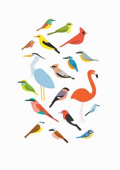 A5 Birds Print by watersounds on Etsy