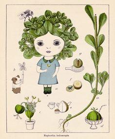 Nathalie Choux's take on botanical drawing.