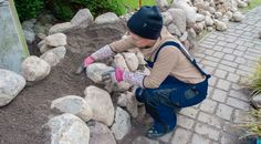 Friesenwall: How to build a dry stone wall in the garden! Whilst age-old around strategy, Hydrangea Shrub, Hydrangea Care, Back Gardens, Outdoor Gardens, Garden Paths, Garden Landscaping, Decoration Gris, Dry Stone, Types Of Plants