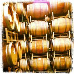 Wine Barrels Storage