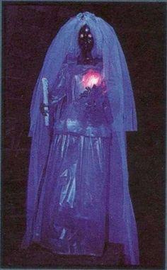 Disney World's Ghost Bride through the years Haunted Mansion Costume, Childhood Fears, Ghost Bride, Bride Look, Spooky Halloween, Disney Parks, Disneyland, Scary, Darth Vader