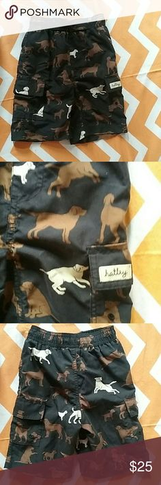 Hatley Swimwear EUC swim trunks Hatley Swim Swim Trunks