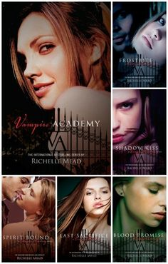 Vampire Academy series by Richelle Mead.  We liked the first three books, but stopped halfway through book four.  Recommended for older readers as there are adult themes.