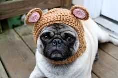 I want to make one for my pug Hahahaha