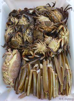 Crabs & razor clams for the picking, Santiago de Compostela market, Galicia, Spain