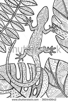 Vector lizard tropical illustration for adult coloring book. Hand drawn coloring page.
