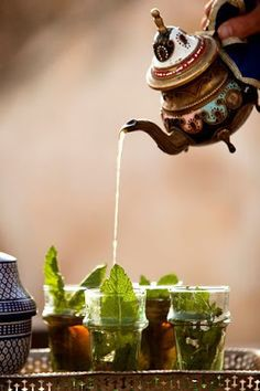 Serving tea in Morocco. Study teas and customs from around the world.