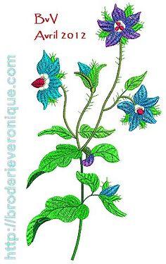 Chez Veronique: Plm01: Plantes Médicinales