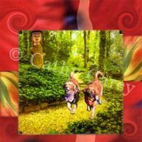 : Spirit Guides by Cathy Carey ©2014 www.artstudiosandiego.com
