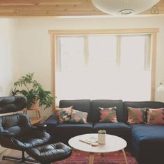 Living room - Get $25 credit with Airbnb if you sign up with this link http://www.airbnb.com/c/groberts22