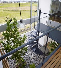 House in Masaki by Hayato Komatsu Architects. Loving the outdoorsy feel.
