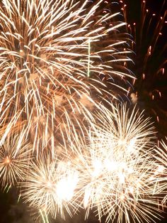 It would be so great to have fireworks at the summer reception . It would be so…
