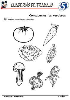 Cuaderno de Trabajo II - 5 Años Ciencia y Ambiente Mirai Nikki, Pedi, Little Ones, Science, Nature, Books, Montessori, Software, Crafts