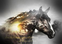 Horse Double Exposure by katmary.deviantart.com on @DeviantArt