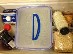 Snapware Ice Block in cooler: Keeps food cold for at least three days!