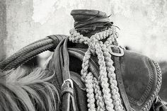 Saddles and Tach 2nd place - Rodeo Saddle Vintage by Steven Bateson - Fine Art America