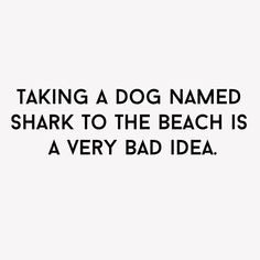 Just a little beach humor 😊 Funny Shit, Haha Funny, Funny Jokes, Funny Stuff, Funny Humour, Funny Thoughts, Sarcastic Quotes, Dad Jokes, Twisted Humor