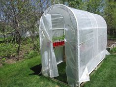 Putting Up An Inexpensive Greenhouse Can Save You A Lot Of Money!