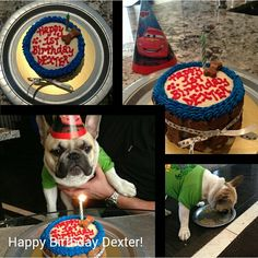 1st birthday cake for Dexter!!