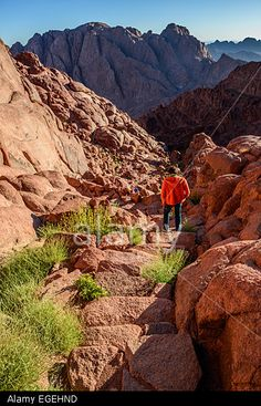 Young man descends from Mount Sinai to St Catherine monastery after meeting sunrise at the mountain Stock Photo