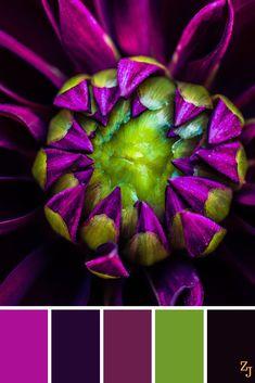 Farbkombinationen zum Häkeln | Lila - Violett - Hellgrün - Dunkelblau Color Schemes Colour Palettes, Colour Pallette, Color Palate, Color Combos, Graphisches Design, Color Stories, Color Swatches, Color Of Life, Color Theory