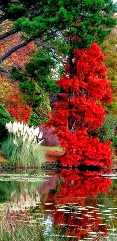 Travels Spot: Autumn Beauty