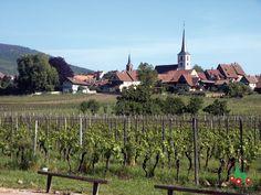 Mittelbergheim liegt in der Region Alsace. / Mittelbergheim se situe en Alsace.