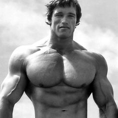 Arnold Schwarzenegger is rightfully a legend in the world of bodybuilding. Here are 35 awesome classic bodybuilding pictures of Arnold Schwarzenegger. Best Chest Workout, Chest Workouts, Chest Exercises, Cardio Workouts, Elite Fitness, Physical Fitness, Fitness Music, Men's Fitness, Fitness Goals