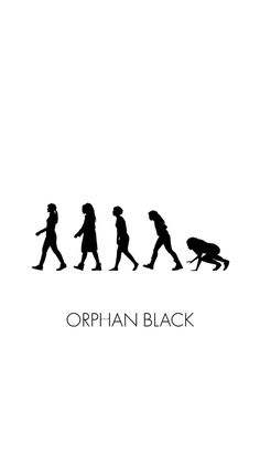 Orphan black                                                                                                                                                                                 More