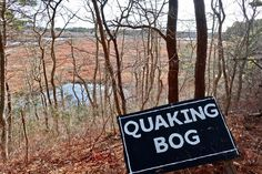 DONE: find this sign at Shank Painter Pond Wildlife Sanctuary Cape Cod, More Photos, Shank, Pond, Trail, Wildlife, Waves, Spring, Beach