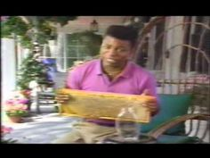 Reading Rainbow - Bees for The Bee Tree