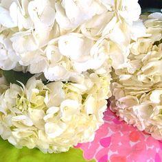 White Hydrangeas via @Lilly Pulitzer Instagram