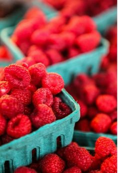 Framboesas. Tem frutinhas mais cheirosas e apetitosas?!!! DC