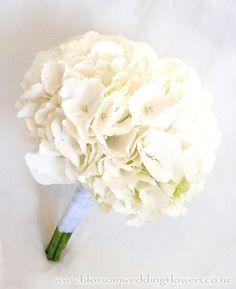 Love white hydrangea
