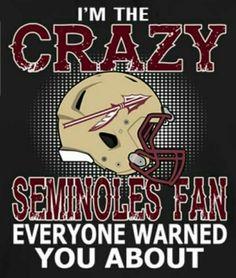 Exactly right. Seminole Football, Florida State Football, Florida State University, Football Baby, Florida State Seminoles, Football Season, College Football, Baseball, Fsu Game