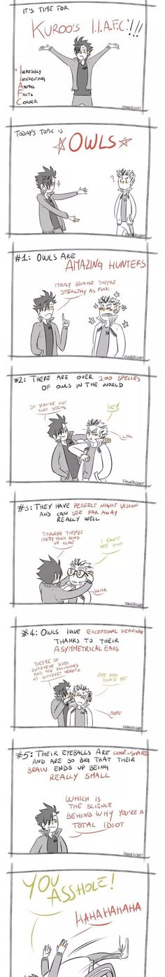 Bokuroo  An awesome bromance and this is hilarious XD #bokuto #kuroo #brotp